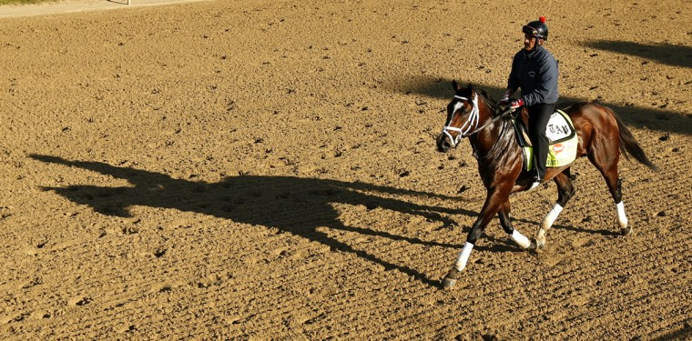 Exercise rider Carlos Cano rides Kentucky Derby hopeful Materiality during morning workouts at Churchill Downs Monday, April 27, 2015, in Louisville, Ky. (AP Photo/Charlie Riedel)