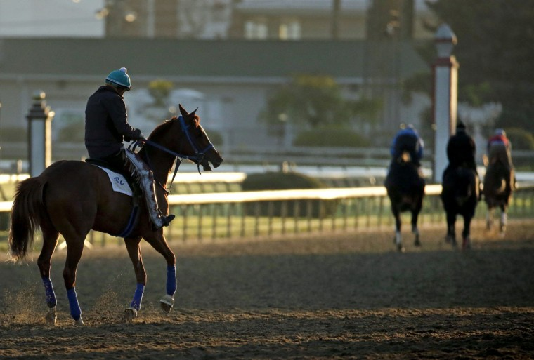 Horses workout on the track at Churchill Downs Wednesday, April 29, 2015, in Louisville, Ky. (AP Photo/Charlie Riedel)
