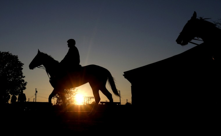 Horses head to the track for early morning workouts at Churchill Downs on Tuesday in Louisville, Ky. (Charlie Riedel/AP)