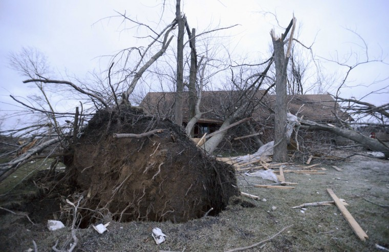 Trees are seen blown over atop a home in Rochelle, Ill., Friday morning, April 10, 2015, after a tornado blew through the area Thursday evening. The National Weather Service says at least two tornadoes churned through six north-central Illinois counties. One person was killed in the small town of Fairdale, Ill. (AP Photo/Daily Herald, Paul Michna)