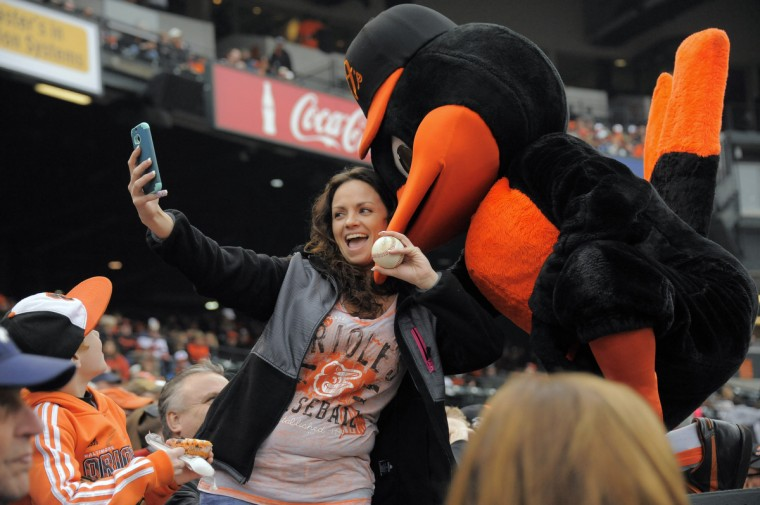 The Orioles Bird poses with Misty Grimes of Laurel during the seventh inning stretch of the Orioles' home opener against the Toronto Blue Jays. (Karl Merton Ferron/Baltimore Sun)