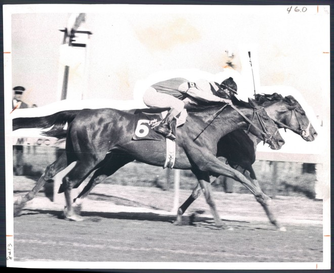 AT THE WIRE--Majestic Prince staves off closing bid of Art And Letters (No. 6) to win 94th running of the Preakness in 1969. (Clarence B. Garrett/Baltimore Sun)