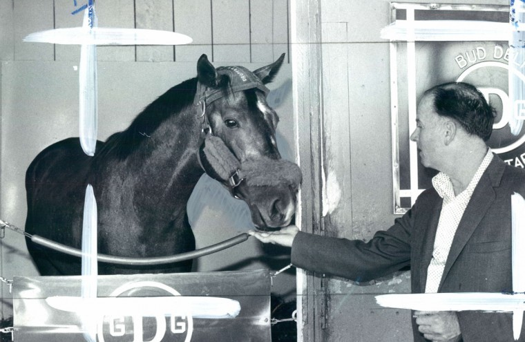 Spectacular Bid is a good boy and takes his medications - in this case a peppermint drop - from Dr. Alex Harhill, who rode with Derby winner from Louisville to Pimlico. (Joseph A. DiPaola/Baltimore Sun)