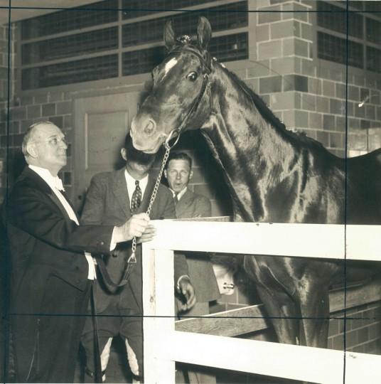 Dr. Freeland, the 1929 Preakness Winner. (Baltimore Sun archives)
