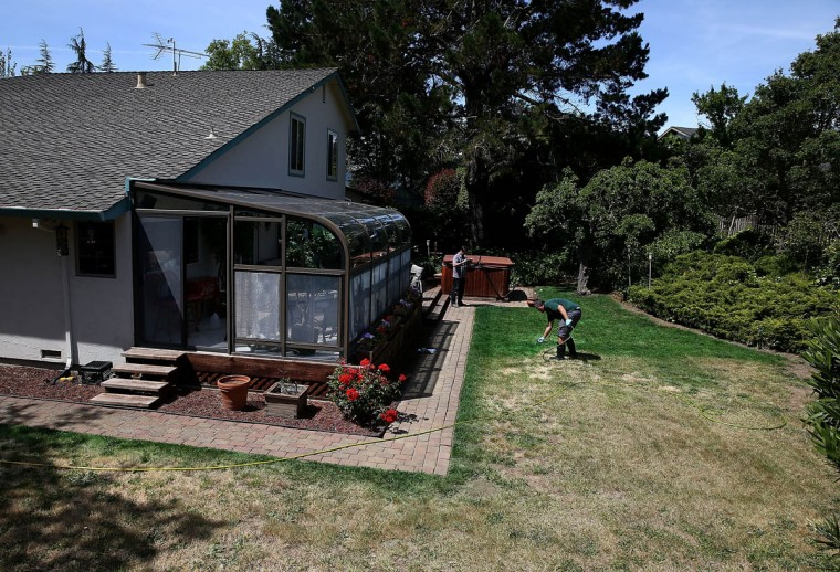 Brown Lawns Green owner Bill Schaffer paints a brown lawn on May 29, 2015 in Novato, California. As the severe California drought continues to worsen, homeowners and businesses looking to conserve water are letting lawns go dormant and are having them painted to look green. The paint lasts eight weeks on dormant lawns and will not wash off. (Justin Sullivan/Getty Images)