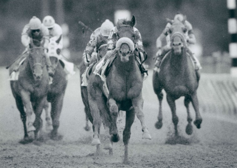 Blushing John, ridden by Pat Day crosses the finish line ahead of the field in the 24th running of the Pimlico Special. (Gene Sweeney Jr./Baltimore Sun, 1989)