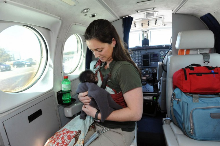 Claire MacNamara holds Keeva after taking a seat aboard a Beech King Air. (Kim Hairston/The Baltimore Sun)