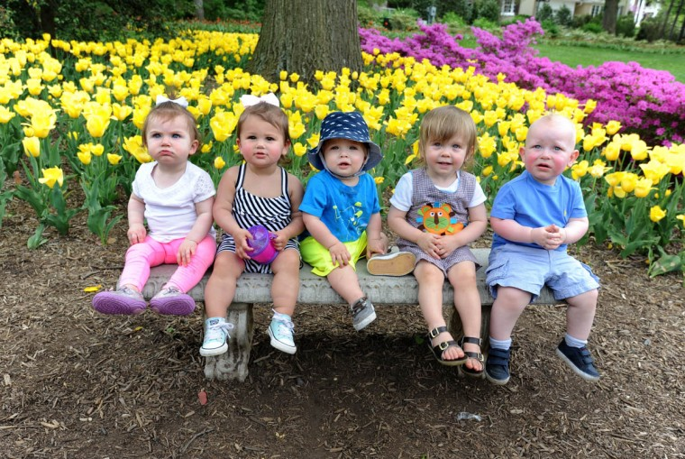 Posing for their moms at Sherwood Gardens are from left: Lila Friedlander, one year; Jocelyn Marcus, sixteen months; Zachary Levinson, thirteen months; Reid Pfeffer, one and a half; and Dylan Attman, one and a half. Moms and children got together for a picnic. Afterwards, their moms took their pictures together. (Algerina Perna/Baltimore Sun)