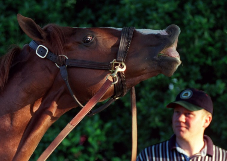 "Preakness horse ""High Yield"". Handler is John Fahey. (Perry Thorsvik/Baltimore Sun)"