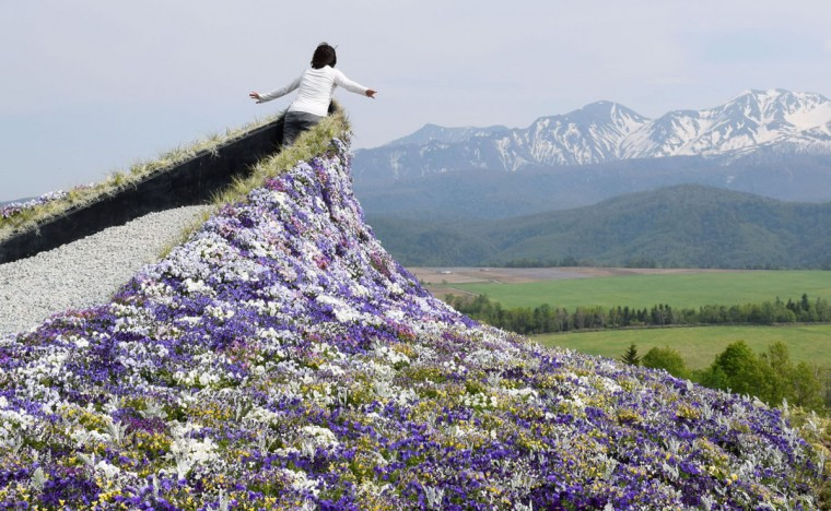 A woman poses for a souvenir photo in a posture as if she is ski jumping towards the snow-capped Daisetsu mountains while wearing a flower dress during a gardening event at Daisetsu Mori-no Garden in Kamikawa in Hokkaido, northern Japan Friday, May 29, 2015. (Risa Ominato/Kyodo News via AP)