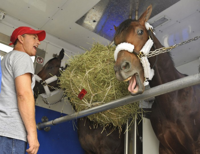 Kevin Willey, left, mimics Super Saver's yawn as the Derby winner settles into a trailer with Aikenite, in back, for the ride to Pimlico to prepare for the Preakness. (Amy Davis/Baltimore Sun)