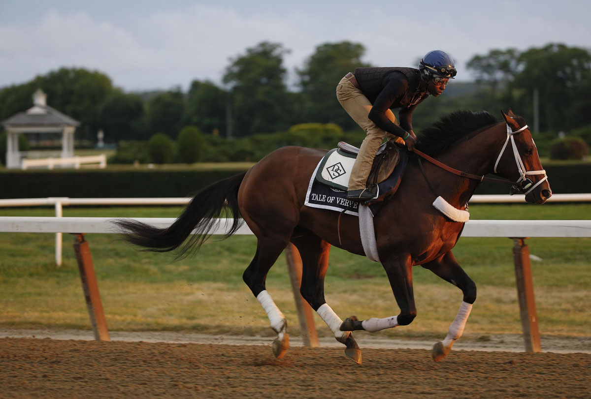 Tale of verve gallops around the main track at belmont park thursday
