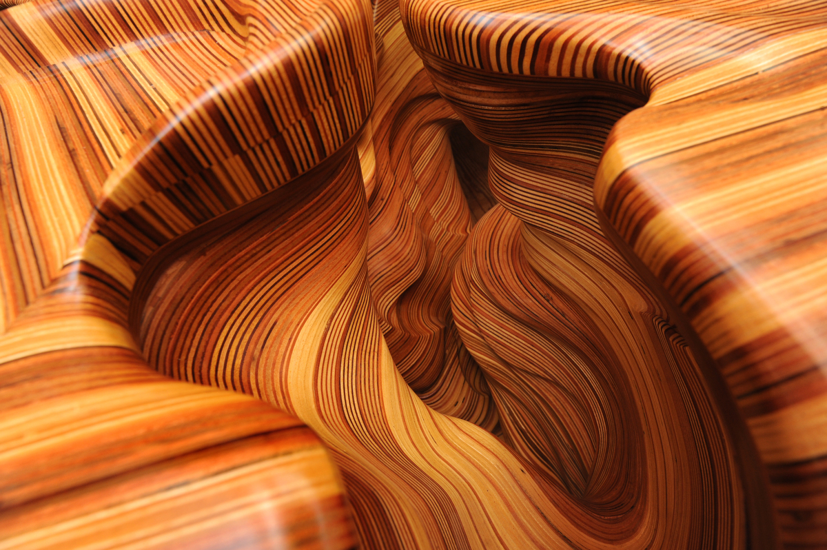 The extraordinary wood sculptures of David Knopp