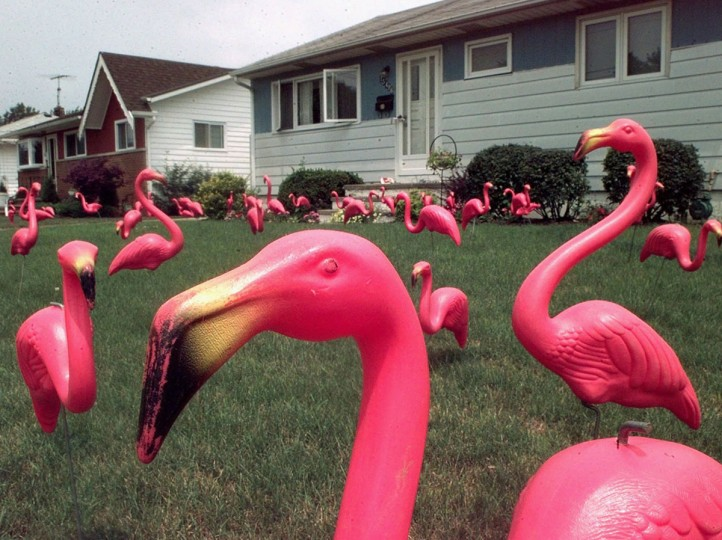 Dozens of pink flamingos stand in a yard in Brook Park, Ohio, in this July 16, 1998, file photo, that was set up by The Original Flamingo Surprise, a party service, to celebrate the resident's 49th birthday. The original version of the plastic flamingo may be singing its swan song after being alternately celebrated as a tribute to one of nature's most graceful creatures and derided as the epitome of American kitsch. Union Products Inc. stopped producing flamingos and other lawn ornaments in June, and is going out of business Nov. 1. (AP Photos/Amy Sancetta, file)