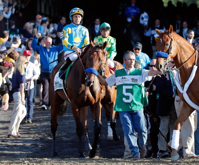 American Pharoah #5, ridden by Victor Espinoza, comes out of the paddock during the 147th running of the Belmont Stakes at Belmont Park in Elmont, New York. (Rob Carr/Getty Images)
