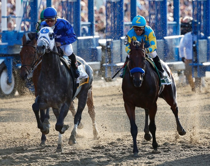 American Pharoah #5, ridden by Victor Espinoza, during the 147th running of the Belmont Stakes at Belmont Park in Elmont, New York. (Rob Carr/Getty Images)