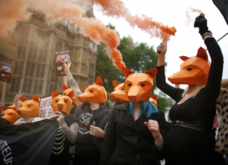 Anti-fox hunting protestors hold smoke flares as they demonstrate outside Parliament on Tuesday in London. The government's proposed legislation relaxing the ban on fox hunting in England and Wales has been postponed after the Scottish National Party says it will vote against the proposals. (Peter Macdiarmid/Getty Images)