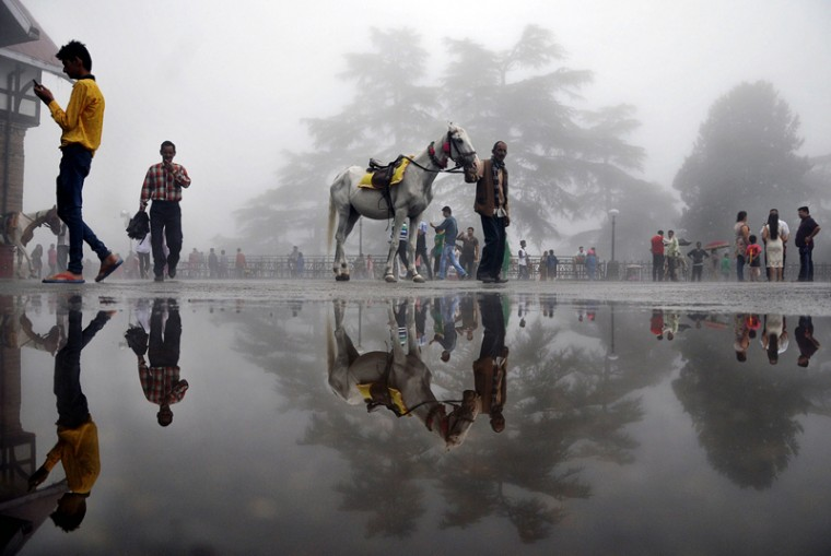 An Indian man walks with a horse past a puddle in the northern hill town of Shimla on Tuesday. (AFP/Getty Images)