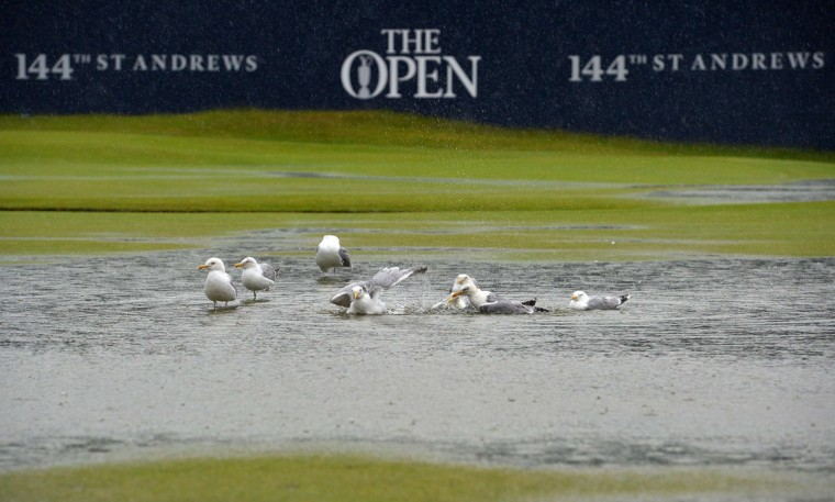 Gulls enjoy the water-logged 1st fairway after heavy rain make the course unplayable early on the second day of the 2015 British Open Golf Championship on The Old Course at St Andrews in Scotland, on July 17, 2015. By 8:00 p.m. large puddles had formed on the Old Course's fairways and greens as the deluge continued and director of greenkeeping Gordon Moir said that no time could yet be set for play to resume. (AFP Photo/Glyn Kirk)