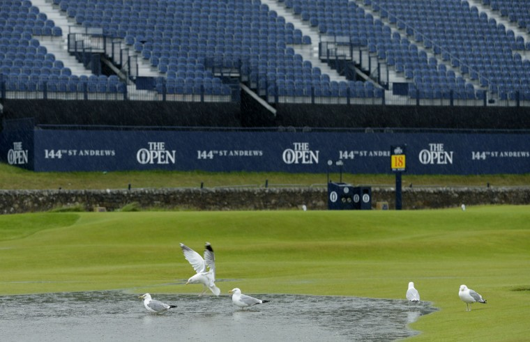 Birds flock to a rain pool on the 18th hole during the second round of the British Open Golf Championship at the Old Course, St. Andrews, Scotland, Friday, July 17, 2015. (AP Photo/David J. Phillip)
