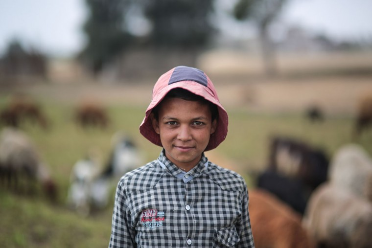 In this Thursday, May 14, 2015 photo, a young shepherd poses for a picture in his family's farm, in a village in the Nile Delta town of Behira, 300 kilometers (186 miles) north of Cairo, Egypt. Children still play among banana trees and alfa-alfa fields as sheep graze nearby and palm trees rustle in the wind _ but such pastoral images are being pushed out by an unstoppable sprawl encroaching on the landscape. (AP Photo/Mosa'ab Elshamy)