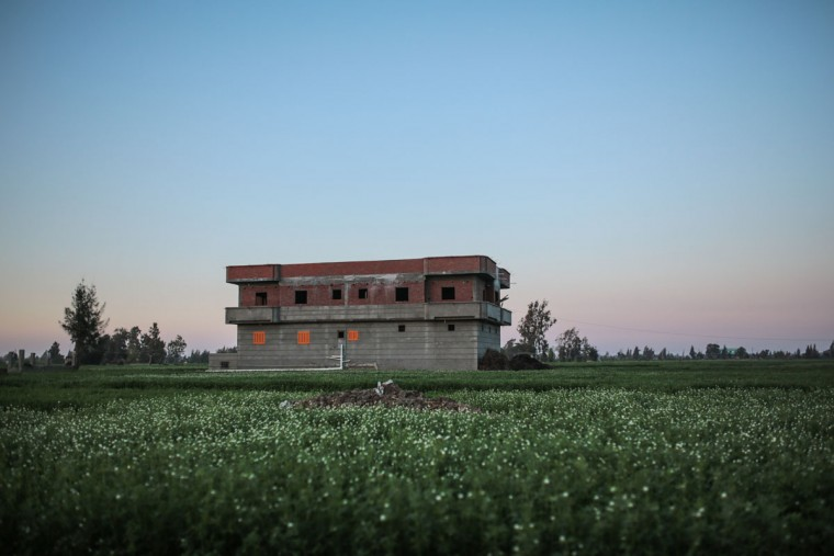 In this Thursday, May 7, 2015 photo, a recently constructed house stands in the middle of agricultural land in a village in the Nile Delta town of Behira, 300 kilometers (186 miles) north of Cairo, Egypt. Red-brick urban settlements are springing up everywhere in Egypt, snuffing out farmland to make way for the growing population in this country of about 90 million people. (AP Photo/Mosa'ab Elshamy)