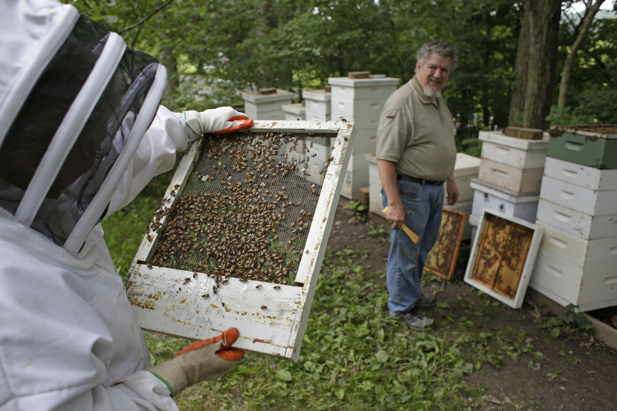 Carroll county beekeepers living the sweet life