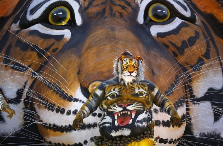 An Indian artist with his body painted with the likeness of a tiger dances before a tableau with a picture of tiger during the 'Pulikali' or Tiger Dance procession in Thrissur, Kerala state, India, Monday, Aug. 31, 2015. This folk art festival is held every year in this town to entertain people during the harvest festival Onam. (AP Photo/Arun Sankar K.)