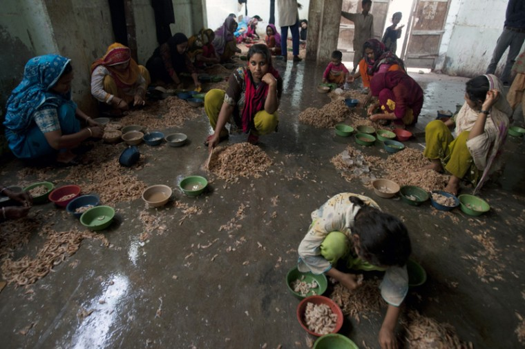 Pakistani girls, who work on daily wages, peel and clean shrimp to earn a living for their families in Karachi, Pakistan, on Tuesday.(Shakil Adil/AP)