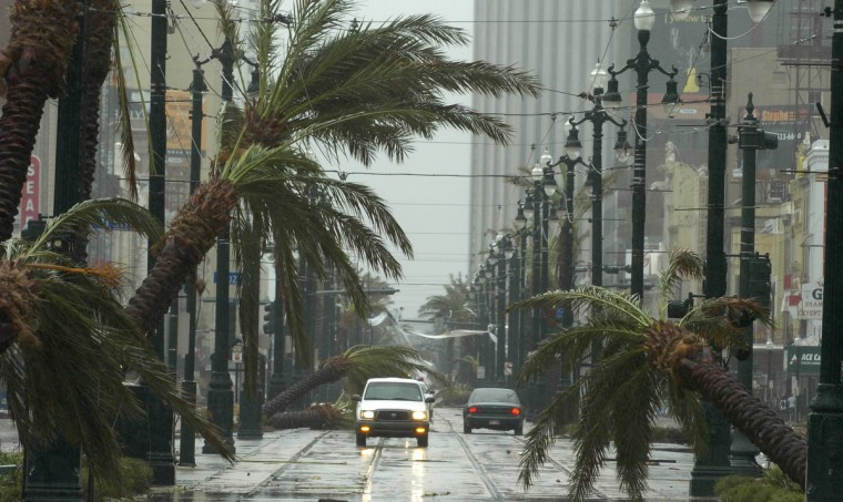 August 29, 2005 -  Vehicles drive north on Canal street using the streetcar lane to get past toppled palm trees as Hurricane Katrina made its way through  New Orleans. (John Makely/Baltimore Sun)