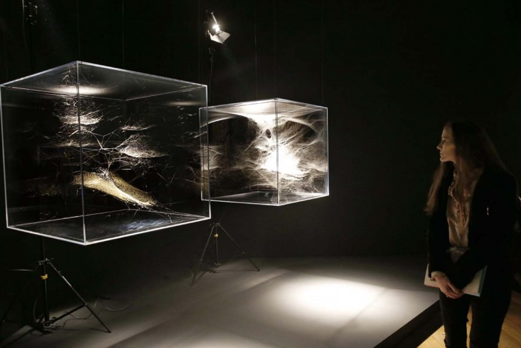 A visitor looks at spiderweb scultpures by Argentinian artist Tomas Saraceno that are part of the exhibition 'A Brief History of the Future' (Une brève histoire de l'avenir) during a press preview at the Louvre museum in Paris on September 18, 2015. The exhibition will be open to the public from September 24, 2015 until January 4, 2016.  || CREDIT: PATRICK KOVARIK - AFP/GETTY IMAGES