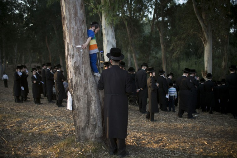 Ultra-Orthodox Jews gather by the Yarkon springs as they participate in a Tashlich ceremony near Rosh Haain, central Israel, Monday, Sept. 21, 2015. (AP Photo/Oded Balilty)