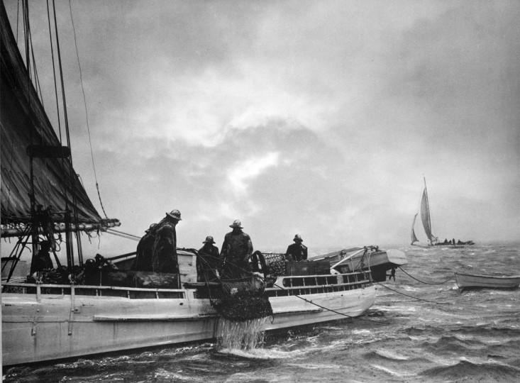 1948 - Oyster Dredgers on the Choptank. (A. Aubrey Bodine/Baltimore Sun)
