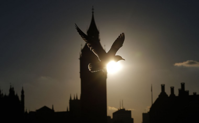 A seagull passes by as the sun sets beside Big Ben's clock tower, in London, Monday, Oct. 12, 2015. (AP Photo/Frank Augstein)