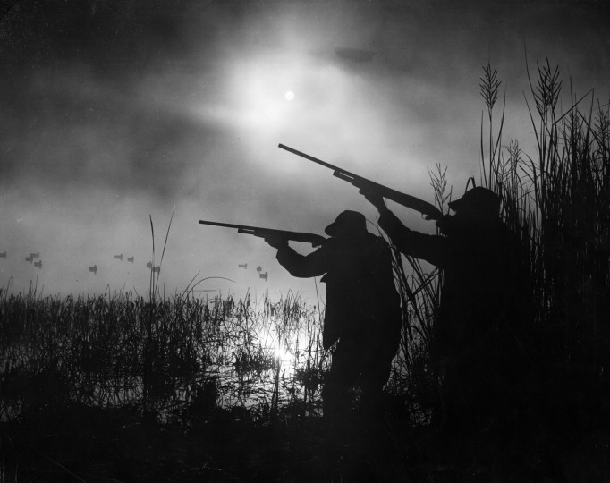 1949 - Misty morning duck hunting on the Patuxent River. (A. Aubrey Bodine/Baltimore Sun)