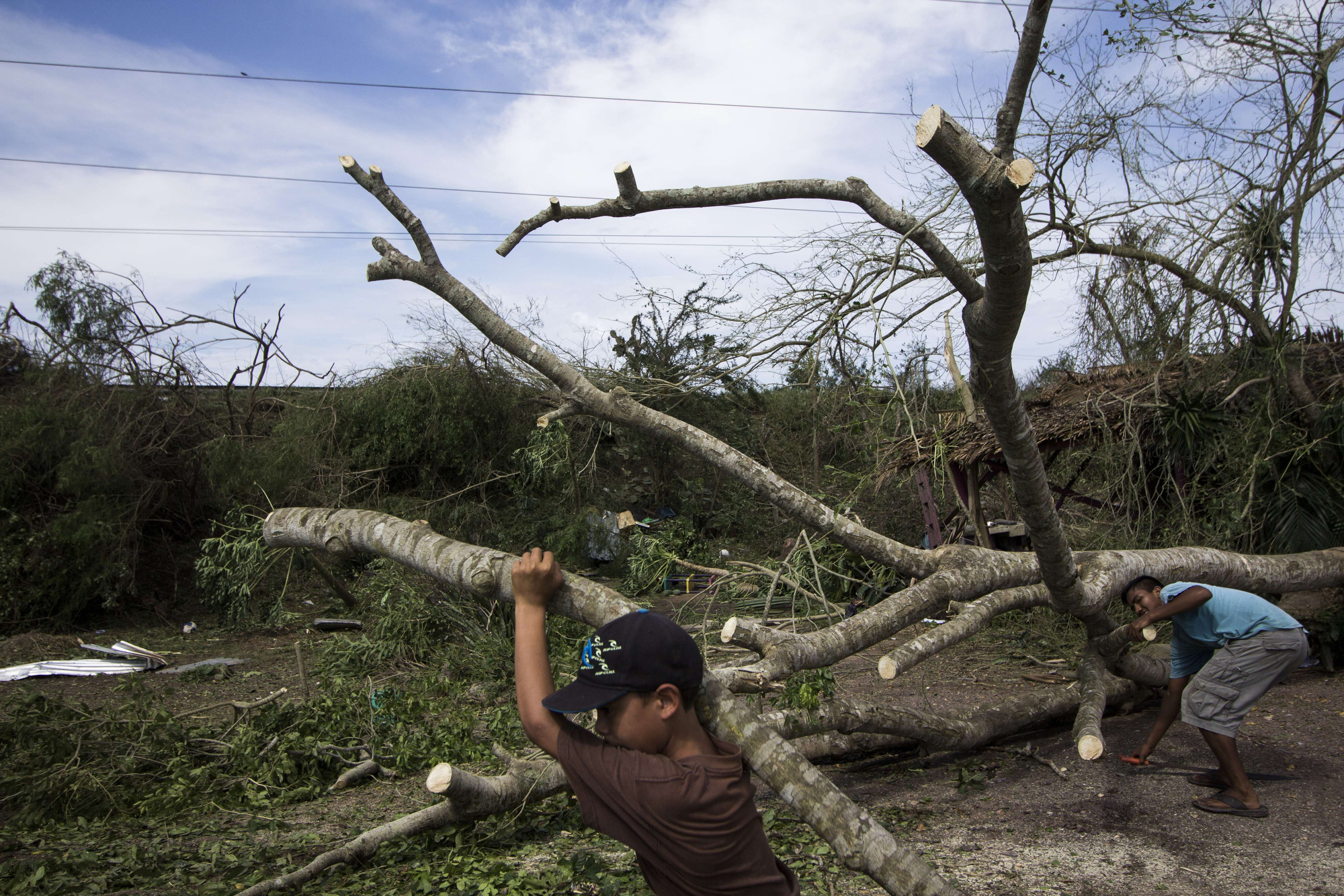 the formation of hurricanes essay Difference between hurricane and tornado - hurricane essay example the formation of a hurricane can be detected early and precisely measured throughout its life.