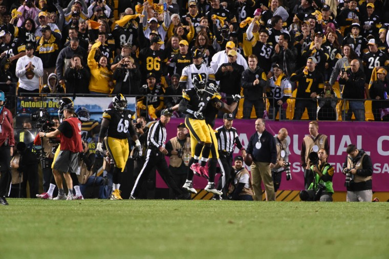 sp-ravens-p46-steelers-1002 lam