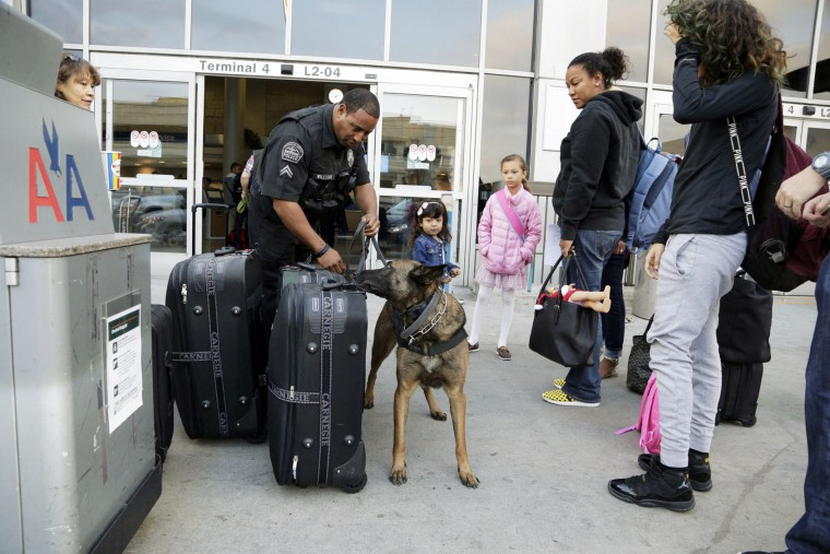 Los Angeles Airport Police Officer Eric Williams and his canine partner Buc check the luggage of travelers leaving Los Angeles International Airport for the Thanksgiving holiday Tuesday, Nov. 24, 2015. (AP Photo/Nick Ut)
