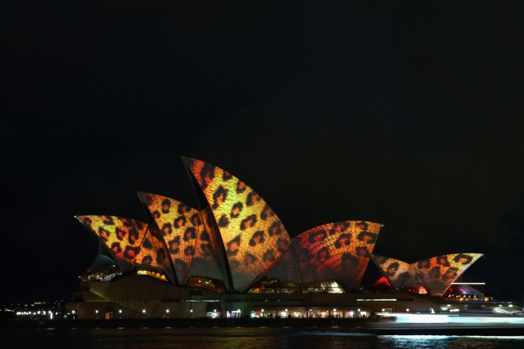 The sails of the Sydney Opera House are illuminated for the Vivid Sydney festival on May 24, 2013 in Sydney, Australia (Cameron Spencer/Getty Images)