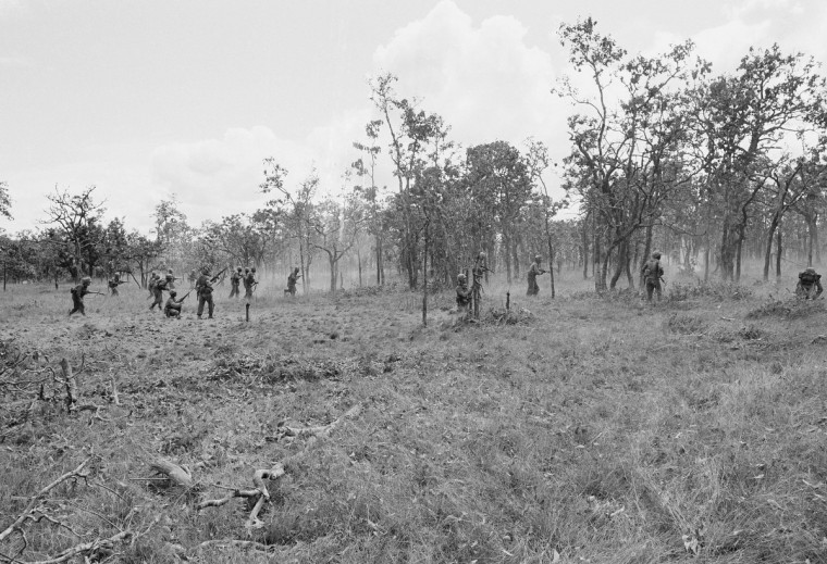 American Riflemen of B Company, 2nd Battalion., 7th Cavalry. stand up in tall grass to get a better view as they fire into north Vietnamese sniper pockets outside US perimeter in Ia Drang Valley, Vietnam, Tuesday, Nov. 16, 1965. (AP Photo)