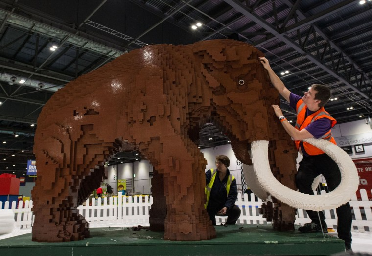Annie Diment and Ed Diment put the final bricks in place on their Ice Age display, with a Lego woolly mammoth made from 400,000 bricks, which took 9 weeks to build, at ExCel on December 10, 2015 in London, England. (Photo by Chris Ratcliffe/Getty Images)