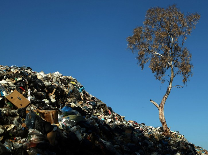 Rubbish is piles up around a tree at a temporary garbage dump north-east of the Lebanese capital, Beirut, on December 21, 2015. (PATRICK BAZ/AFP/Getty Images)