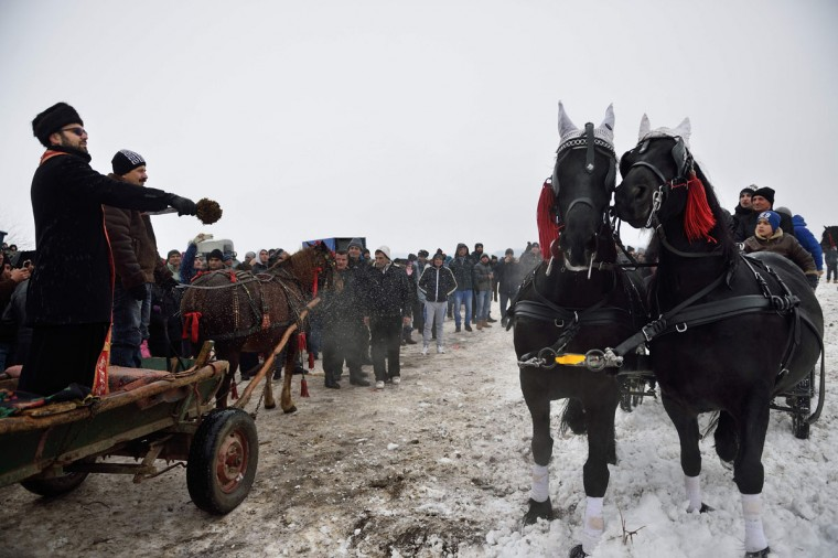 An orthodox priest splashes horses with holy water during the traditional Epiphany celebration in the village of Pietrosani southwest of Sibiu, Romania, on January 6, 2016. As every year, horse owners and their animals gathered on a field next to the village to be blessed by an orthodox priest and to take part in a horse race. (AFP Photo / Daniel Mihailescu)
