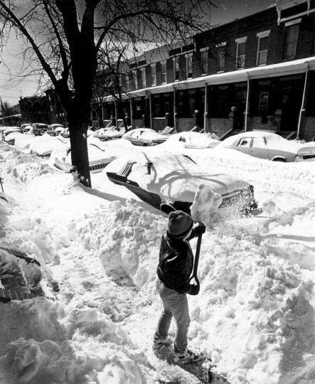 February 13, 1983 -- Salvador Lumaro, 12, works on North Ellwood Street.  He wasn't sure how much he'd get paid, but enjoyed the work.  (Jed Kirschbaum/Baltimore Sun)