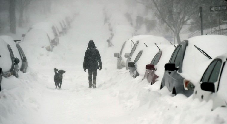 A dog and his owner walk down a snow-covered Hopkins Road in Rodgers Forge Saturday morning. (Jerry Jackson/Baltimore Sun)