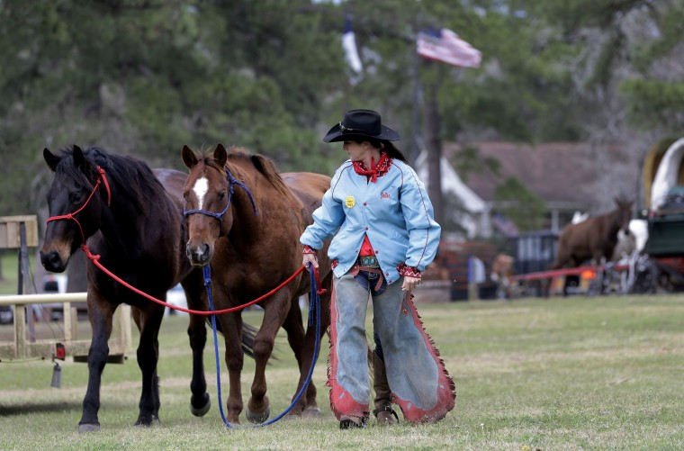 Julie Coombs walks horses across the camp Tuesday, Feb. 23, 2016, in Tomball, Texas. Coombs is part of the Sam Houston Trail Ride heading toward Houston for the Houston Livestock Show and Rodeo parade on Saturday. (AP Photo/David J. Phillip)