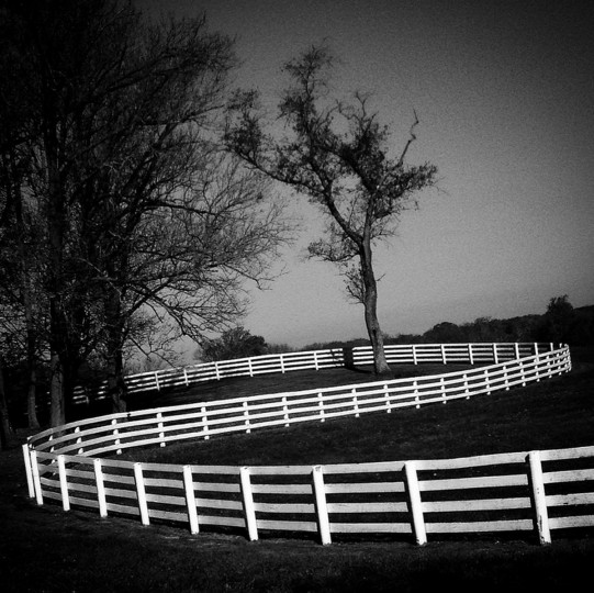 Swirling fences in Worthington Valley.  (Lloyd Fox/Baltimore Sun)