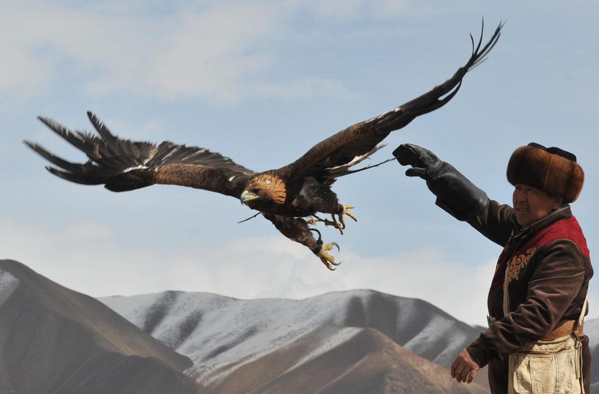 The hunting festival 'Salburun' in Kyrgyzstan
