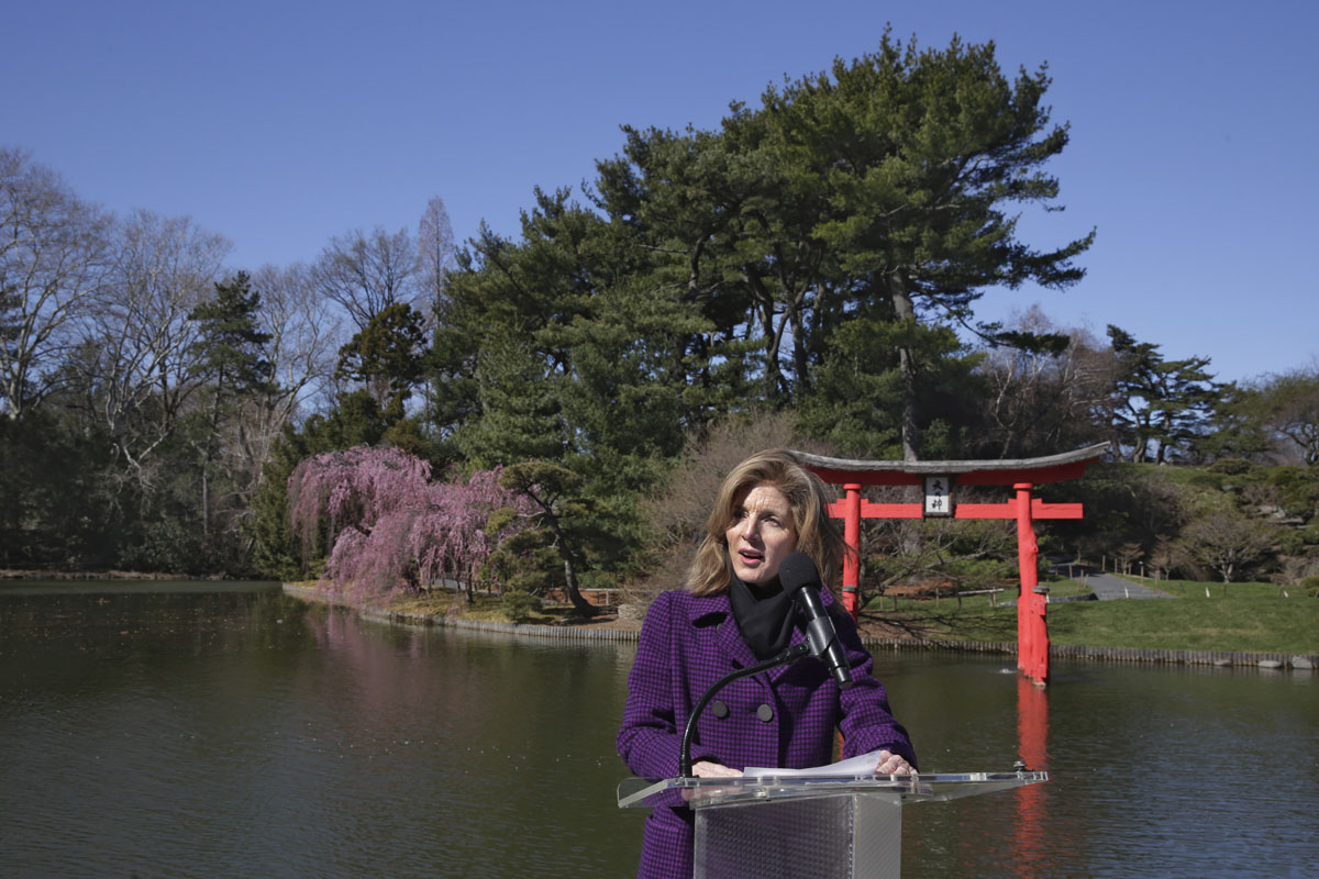 100 Years For Japanese Hill And Pond Garden In Brooklyn