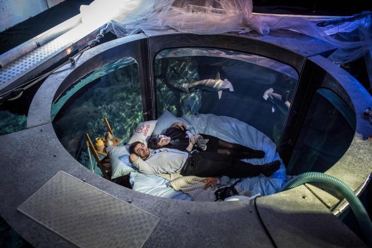 Paris aquarium s underwater bedroom for Fish tank bed